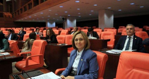 Milletvekili Depboylu TBMM'ye, Aydın'daki Jeotermal Santralleri taşıdı
