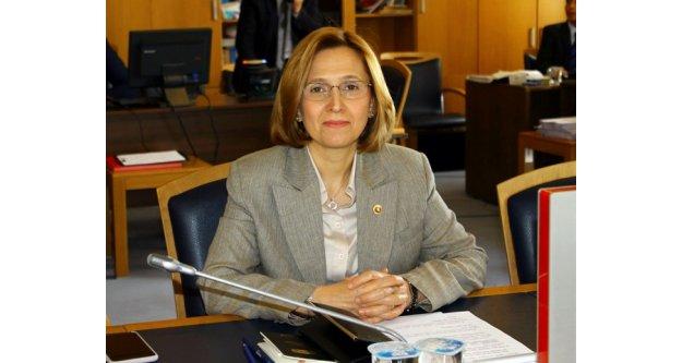 Milletvekili Depboylu, Jeotermal Önergesini Geri Çekti
