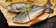 Egede balıklar rekora yüzdü