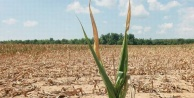 Uzmanlar küresel ısınma konusunda uyarıyor…