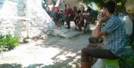 Çine#039;de, bir kişi av tüfeğiyle intihar etti