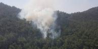 Aydında 10 Dönüm Arazi Yangında Zarar Gördü