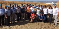 Çineli Çiftçiler Manisada Tarla Gününe Katıldı