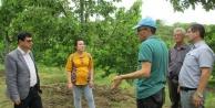 Çinenin Kavşit Mahallesinde Üreticilere Eğitim Verildi