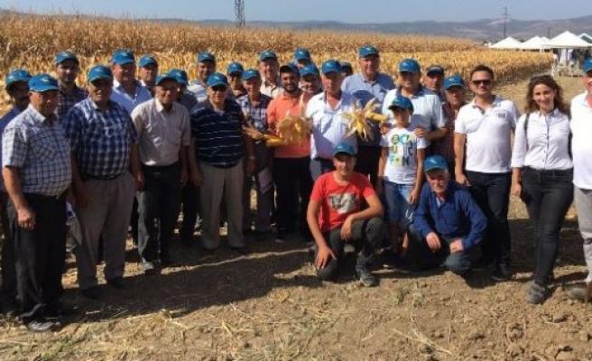 Çineli Çiftçiler Manisa'da Tarla Gününe Katıldı