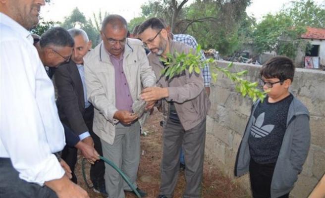 Din Görevlileri, Cami Bahçelerine Fidan Dikti