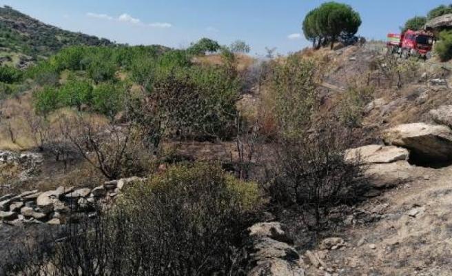 Çine'de, tarım arazisinde yangın çıktı