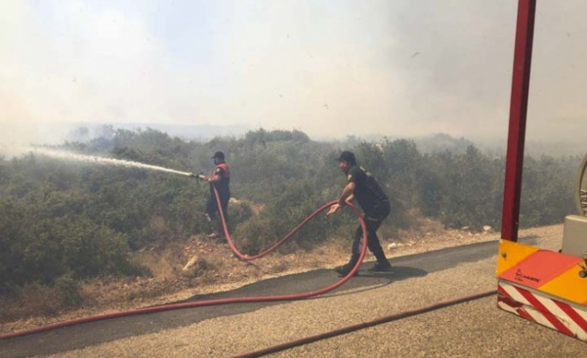 Aydın Büyükşehir Belediyesi İtfaiyesi Gün Boyu Yangınlarla Mücadele Etti