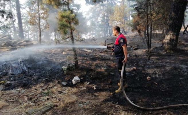 Büyükşehir Tüm Birimleriyle Karacasu'da Yangına Müdahale Ediyor
