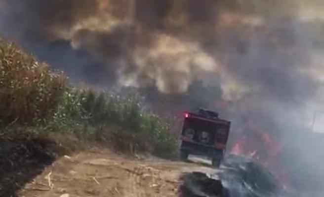 Çine'de Yangın