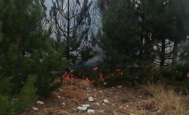 Madran Dağı'nda orman yangını