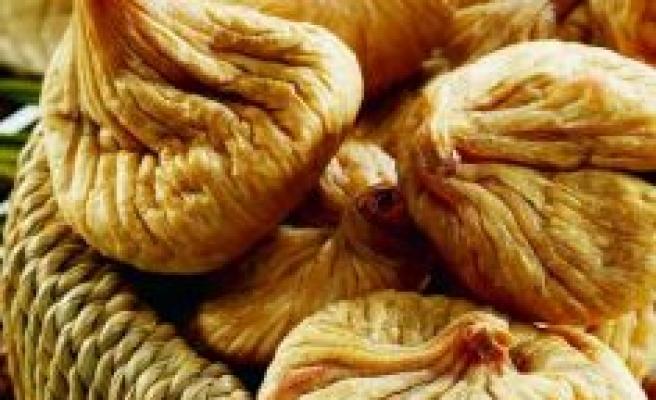 Kuru incirin ihracat yolculuğu 2 Ekim'de başlıyor