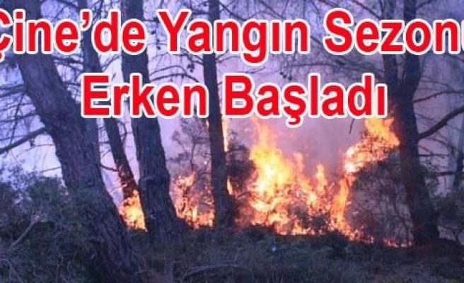 Orman yangınını, Belediye'nin itfaiyesi söndürdü