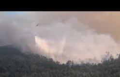 Akçaova'da Gökbel Dağında orman yangını 2