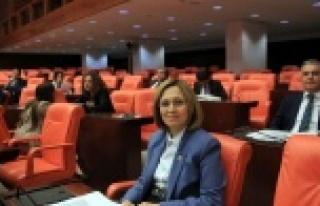 Milletvekili Depboylu TBMM'ye, Aydın'daki Jeotermal...