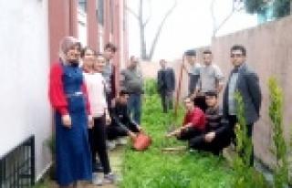 Akçaova Anadolu Lisesi Fidan Dikme Şenliği