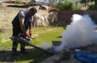 Belediye Sivrisinekle Mücadele Başlattı