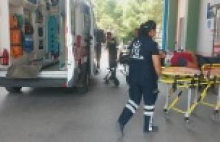 Otomobil Kontrolden Çıktı: 2 Yaralı