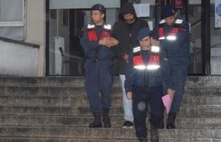 Çine'de Hayvan Hırsızlığı Yapan 4 Kişi...