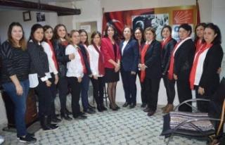 """CHP Çine Kadın Kollarından """"İstanbul Sözleşmesi..."""