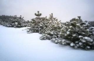 Madran Dağı karla kaplandı