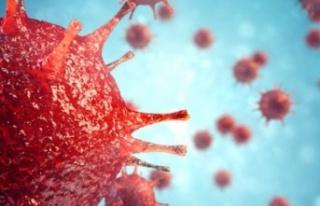 Çine'de Mutasyonlu Virüs Ölümü