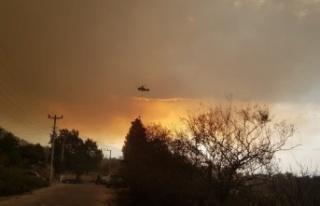 Orman yangını dolayısıyla Kabalar Mahallesi tahliye...