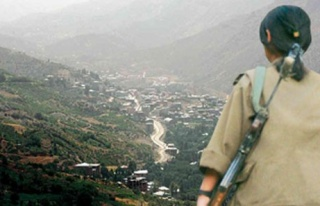 Büyük kan kaybeden PKK bakın ne istedi