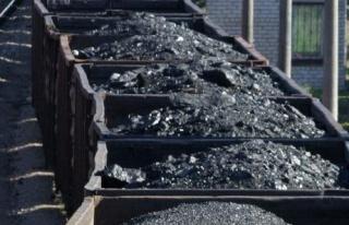 Şehit ailelerine kömür ücretsiz