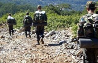 Şemdinli'de 20 PKK'lı terörist öldürüldü