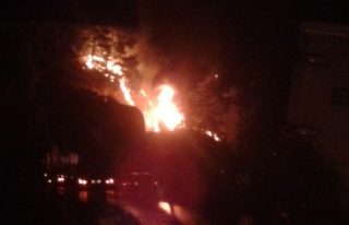 Havai fişek fabrikasında yangın: 40 ölü