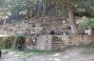 Şarlan Tabiat Parkı ilgi bekliyor