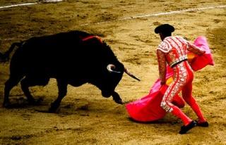İspanya'da boğa güreşine 6 yıl sonra izin