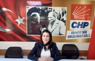 """CHP'li OK, """"Umut  kadın  da ;kadınların  mücadelesinde"""""""
