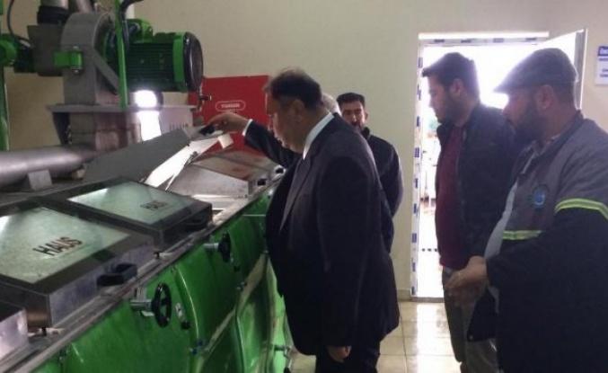 Dinçer, Belediyenin Zeytinyağı Sıkım Fabrikasını Ziyaret Etti