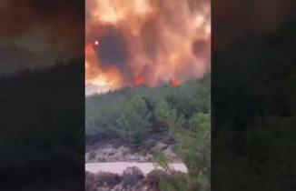 Karpuzlu Tekeler Mahallesinde orman yangını